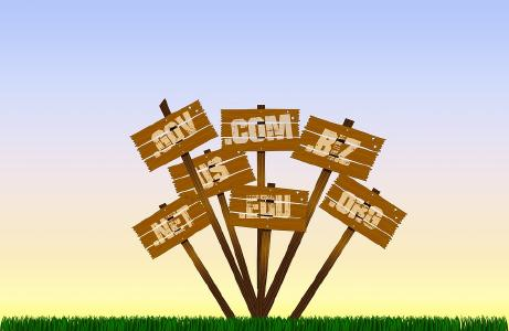 Different domain owners may own the same name at different domain extensions...