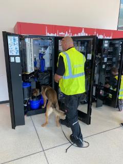 Während der etwa 10-tägigen Cleaning-Maßnahme durchsuchen und kontrollieren ausgebildete Hundeführer der FraSec mit ihren Tieren die sensiblen Bereiche des BER auf Sprengstoffe / Während der etwa 10-tägigen Cleaning-Maßnahme durchsuchen und kontrollieren ausgebildete Hundeführer der FraSec mit ihren Tieren die sensiblen Bereiche des BER auf Sprengstoffe / Bildquelle: FraSec Fraport Security Services
