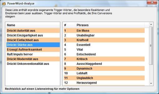 WebsiteBooster 2.0 - PowerWord-Analyse