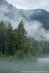 Copyright: Wilderness International Sami Fayed