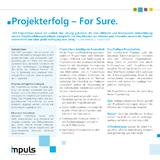 Project4Sure Factsheet DE
