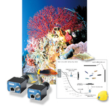 GigE Vision Camera in Coral Reef Fish Study