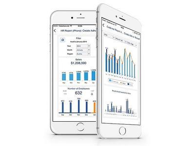 Jedox bietet grenzenlosen Zugriff auf Ihre Daten mit Mobile BI
