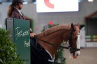 Das Reitsportevent Faszination Pferd findet im Herbst in Nürnberg statt.