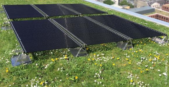 Ideale Kombination zwischen Grün und Solar. Quelle: TubeSolar AG