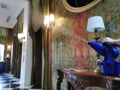 Mehr als oberflächliche Hygiene im Mystery Hotel in Budapest: Hochwirksame ganzheitliche Naturdesinfektion mit Solenal