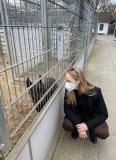 Liebe auf den ersten Blick im Tierheim Süderstraße: Janina Thiele vom Software-Unternehmen slashwhy und Hündin Roska.