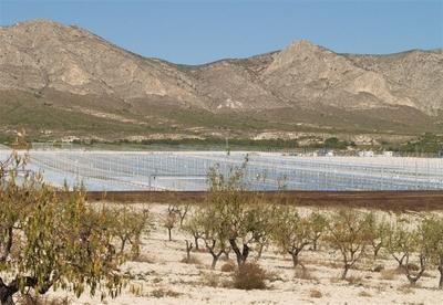 30 MW solarthermisches Kraftwerk PE 2 im Bau