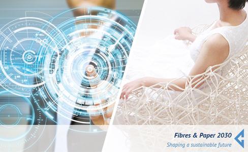 Fibres_Paper_2030
