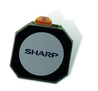 Sharp Typ LS010B7DH01
