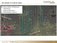 Maple Gold completes geophysical survey with broad-spaced Induced Polarization lines east and northeast of the resource area