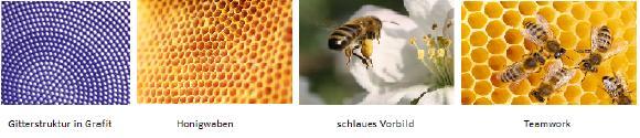 Von Bienen lernen, Kapitel 1
