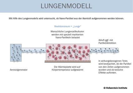 The Hohenstein Lung Model has been used to investigate whether nano-particles can be absorbed from the air that we breathe. © Hohenstein Institute