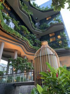 Aus der Krise lernen: Üppiges Grün macht jede Wohn- und Arbeitsumgebung gesünder und lebenswerter. Quelle: Herbert Dreiseitl