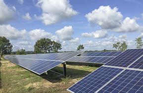 Feature Lynow Solar Park Array