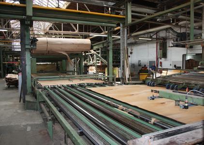 Die von der Blomberger Holzindustrie GmbH gefertigten Buchenholzfurniere kommen u. a. in der Automobilindustrie zum Einsatz. Foto: Effizienz-Agentur NRW