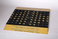 Die in definierten Abständen integrierten gelben und schwarzen Rundborsten der 800 x 600 mm große Sauberlaufmatte entfernen Schmutz und Partikel von den Sohlen der Arbeitsschuhe beim Betreten und Übergehen zuverlässig.