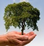 QUERDENKER-Nachhaltigkeitsgipfel 2013