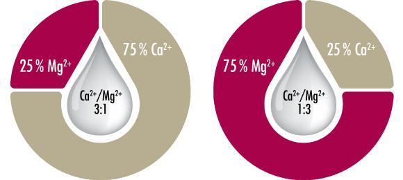 Im Test kamen Wassertypen mit identischer Gesamthärte zum Einsatz. Nur das Verhältnis von Kalzium zu Magnesium wurde variiert. Hier gezeigt: Verhältnis Kalzium zu Magnesium von 3:1 und 1:3