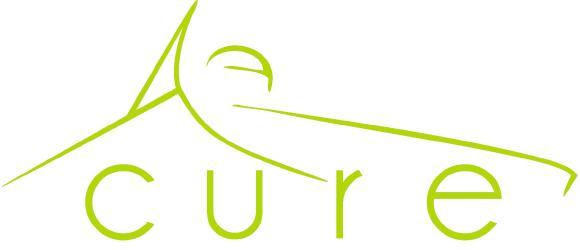 Logo des Formula Student Teams CURE der Dualen Hochschule Baden-Württemberg (DHBW) in Mannheim
