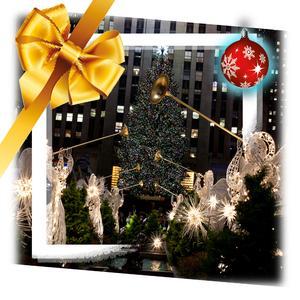 Ingram Micro Christmas Shopping in NYC