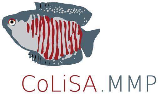 Logo of European project CoLiSA.MMP