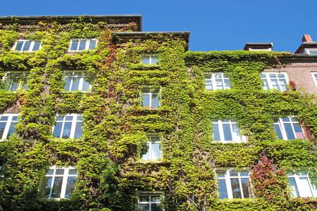 Fassadenbegrünung - Wohnen wie Dornröschen / ©Fotolia.com Kara