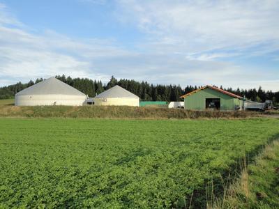 Ansicht Biogasanlage Bioenergie Lichteneck GmbH, Lkr. Grafenau