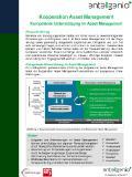 Flyer - KAM_Kooperation Assetmanagement_v1.0