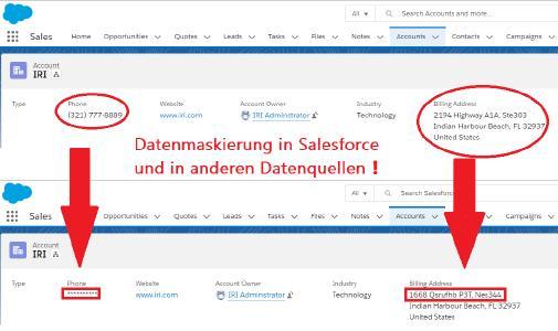 Datenmaskierung in Salesforce