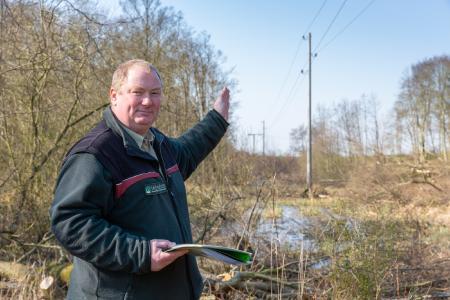 Forstamtsleiter Mathias Regenstein erklärt die Gestaltung der Freileitungstrasse / Foto: WEMAG/Stephan Rudolph-Kramer