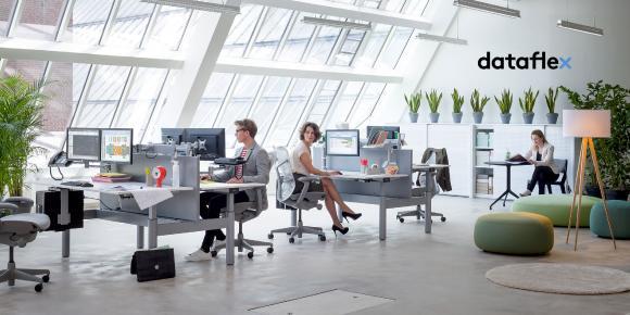 Dataflex Viewmate Monitorarm Büroarbeitsplatz