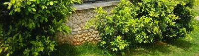 Ältere, dekorativ nachgearbeitete Betonwand mit GEOPANEL ART Schalung-Matrize aus ABS-Kunststoff für Sichtmauerwerke hergestellt