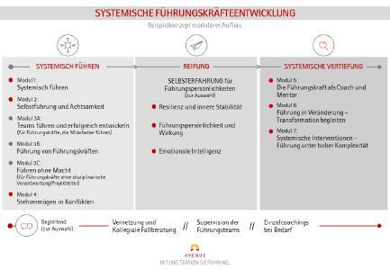 Systemische Führungskräfteentwicklung