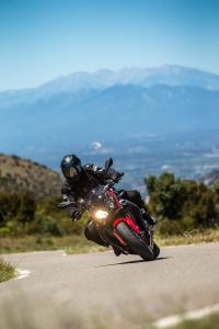 "Wunderlich ""Racing"" crash pads S1000R"