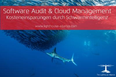 Software Audit & Cloud Management