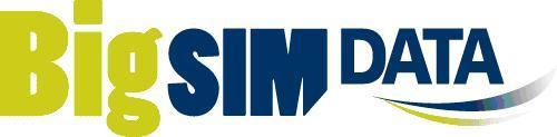 Logo BigSIMdata