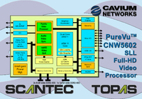Cavium Networks Announces the Availability of its Highly Integrated Single Chip PureVu(TM)  Video Processor Family Enabling Whole-home Wireless Display Capability