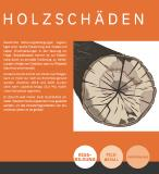 """Beispiel aus der AGR-Broschüre """"Holz im Wandel"""": Holzschäden an Buche"""