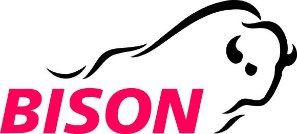 Logo Bison IT Services AG