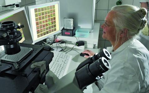 Dr. med. Katharina Pachmann bei Forschungsarbeiten