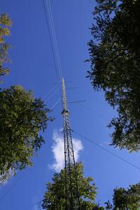 Meteo tower in the forest