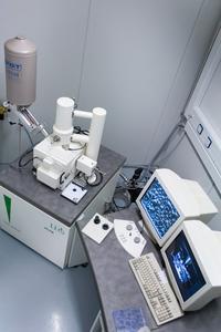 TCS Scanning Electron Microscope