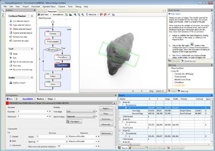 Matrox Design Assistant software development environment showing inspection of a croissant