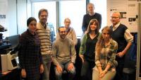 Die AFM-Super-Resolution-Gruppe unter der Leitung von Dr. Frank Lafont (rechts)