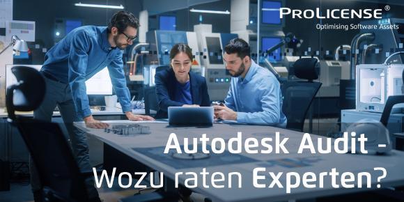 Autodesk Audit - Wozu raten Experten - ProLicense - Autodesk Lizenzaudit