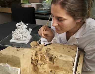 Freilegung des Fundes unter Zuhilfenahme des 3D-Modelles, welches anhand der Daten von Yxlon erstellt wurde (Foto: V. Minkus, NLD)