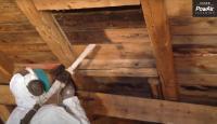 Das KDL-Verfahren. Ganz ohne Chemie reinigen wir Ihre Holzobjekte. Nur mit kalter Trockendruckluft und sonst nichts…
