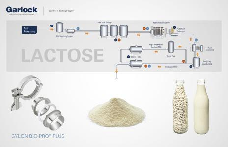 Requirements on gaskets in manufacturing of lactose for the pharmaceutical industry. (c) Garlock GmbH / Shutterstock ID 194703917 / Fotolia ID 71583954