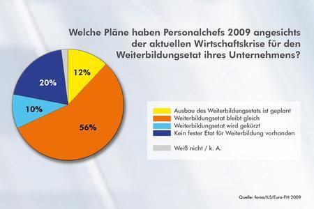 """""""Welche Pläne haben Personalchefs 2009 angesichts der aktuellen Wirtschaftskrise für den Weiterbildungsetat ihres Unternehmens?""""/Quelle: ILS / Euro-FH"""